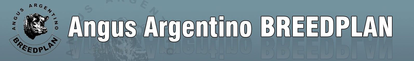 Angus Argentino BREEDPLAN